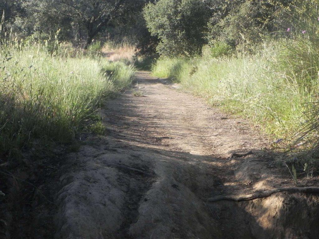 Camino-Mozárabe-Cerro-Muriano-Villaharta
