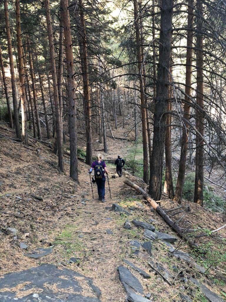 Peregrinos-bajando-aldeire