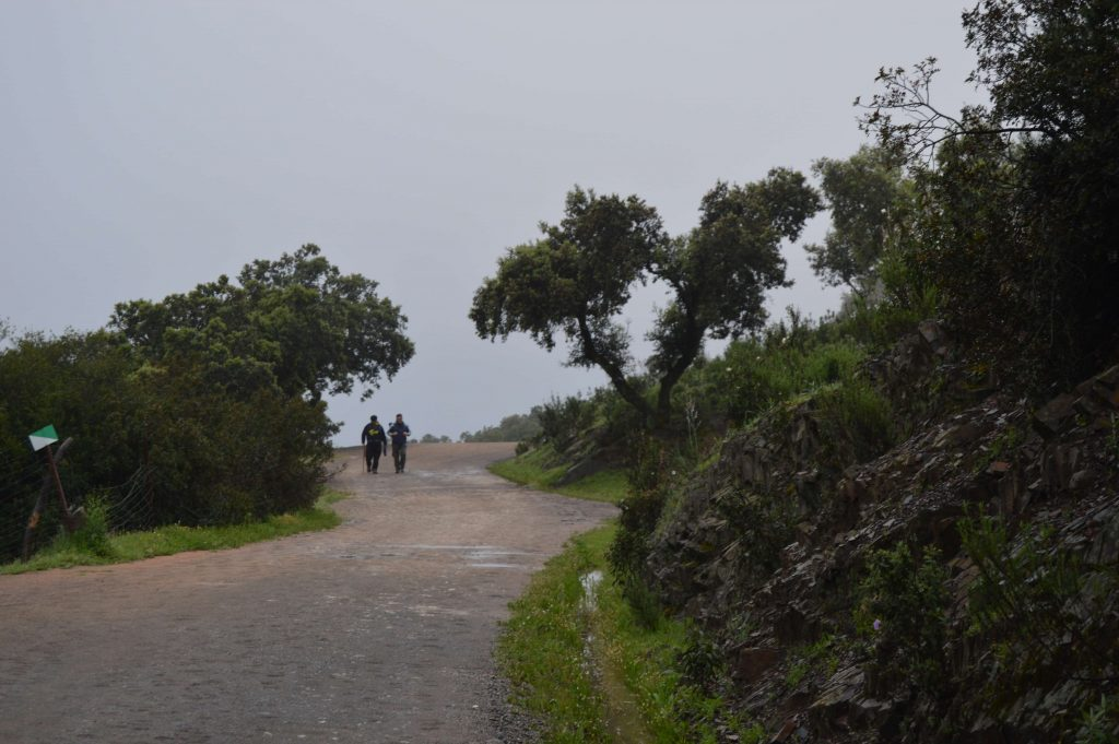 peregrinos-Virgen-de-la-cabeza